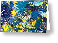 Colorful tropical fish Greeting Card by Elena Elisseeva
