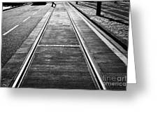 Completed Tram Rails On Princes Street Edinburgh Scotland Uk United Kingdom Greeting Card by Joe Fox
