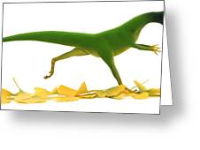 Compsognathus Greeting Card by Jane Burton and Warren Photographic and Photo Researchers