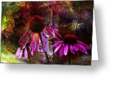 Cone Flower Beauties Greeting Card by J Larry Walker