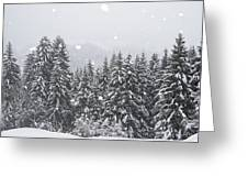 Coniferous Forest In Winter, Alps Greeting Card by Konrad Wothe