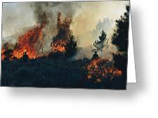 Controlled Fires Burn Eagerly In Small Greeting Card by Melissa Farlow