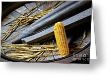 Corn Cob Greeting Card by Carlos Caetano