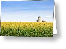 Corn Field With Silos Greeting Card by Elena Elisseeva