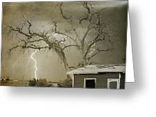 Country Horses Lightning Storm Ne Boulder Co 66v Bw Art Greeting Card by James BO  Insogna