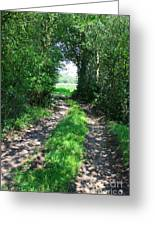 Country Road Greeting Card by Carol Groenen