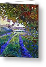 Country Roads Provence Greeting Card by David Lloyd Glover