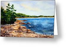 Cove Shore Greeting Card by Laura Tasheiko