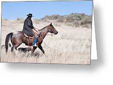 Cowboy on Horseback Greeting Card by Cindy Singleton