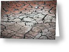 Cracked Earth Greeting Card by Athena Mckinzie