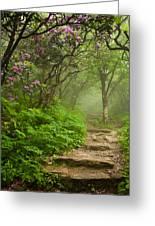 Craggy Steps Greeting Card by Joye Ardyn Durham