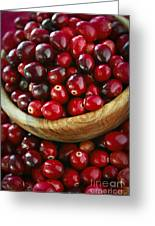 Cranberries In A Bowl Greeting Card by Elena Elisseeva