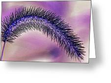 Crazy Foxtail 1 Greeting Card by Marty Koch