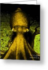Creatures Of The Deep - The Octopus - V4 - Gold Greeting Card by Wingsdomain Art and Photography