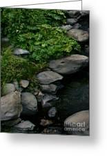 Creek Flow Panel 2 Greeting Card by Peter Piatt