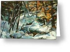 Creek In The Cold Greeting Card by Claire Gagnon