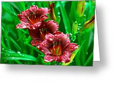 Crimson Lilies In April Shower Greeting Card by Lisa  Spencer