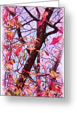 Crisp Autumn Day Greeting Card by Judi Bagwell