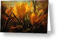 Crocus In Spring Bloom Greeting Card by Ann Powell