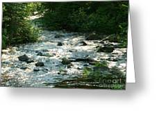 Crooked Creek Greeting Card by Sue Wild Rose