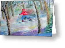 Cross Country Ski Greeting Card by Robert P Hedden