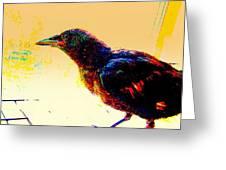 Crow Walk Greeting Card by YoMamaBird Rhonda