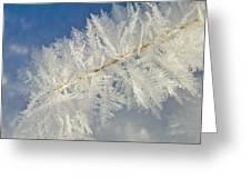 Crystal Perfection Greeting Card by Bob Berwyn