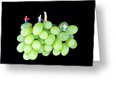 Cultivation On Grapes Greeting Card by Paul Ge