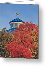 Cupola Coolidge Park Carousel Greeting Card by Tom and Pat Cory