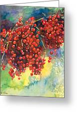 Currants Berries Painting Greeting Card by Svetlana Novikova