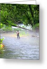 Current River 6 Greeting Card by Marty Koch