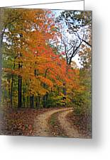 Curve In Fall Greeting Card by Marty Koch