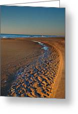 Curving To The Sea I Greeting Card by Steven Ainsworth