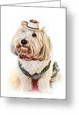 Cute Dog In Halloween Cowboy Costume Greeting Card by Elena Elisseeva