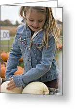 Cute Little Girl Picking A Pumpkin Greeting Card by Christopher Purcell