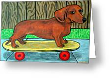 Dachshund Skateboarding Greeting Card by Jay  Schmetz