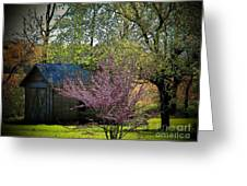 Daddys Old Shed In The Spring Greeting Card by Joyce Kimble Smith