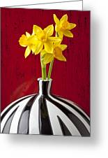 Daffodils Greeting Card by Garry Gay