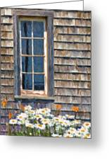 Daisies And Daylilies Greeting Card by Verena Matthew