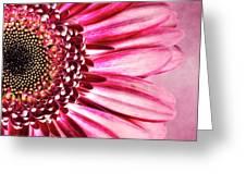 Daisy IIi Greeting Card by Tamyra Ayles