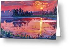Daybreak Reflection Greeting Card by David Lloyd Glover