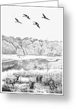 Deer And Geese - Lake Mattamuskeet Greeting Card by Tim Treadwell
