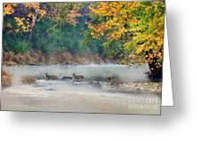 Deer Crossing River Greeting Card by Dan Friend