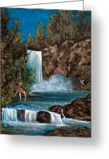 Deer Falls Greeting Card by Gloria Jean