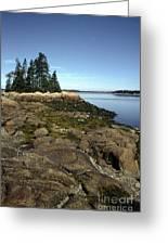 Deer Isle Granite Shore Greeting Card by Thomas R Fletcher