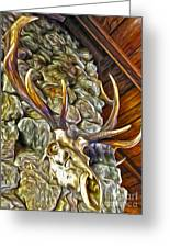 Deer Skull Greeting Card by Gregory Dyer