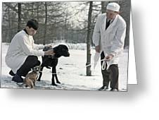 Demikhov's Laboratory Dogs, 1967 Greeting Card by Ria Novosti