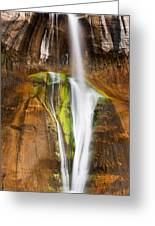 Desert Cascade  Greeting Card by James Marvin Phelps