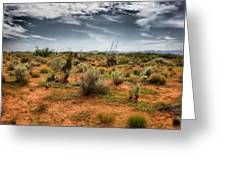 Desert Of New Mexico Greeting Card by Thomas  MacPherson Jr