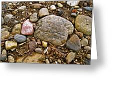 Designs By Nature - Fp3 - Rocks Greeting Card by Felix Zapata